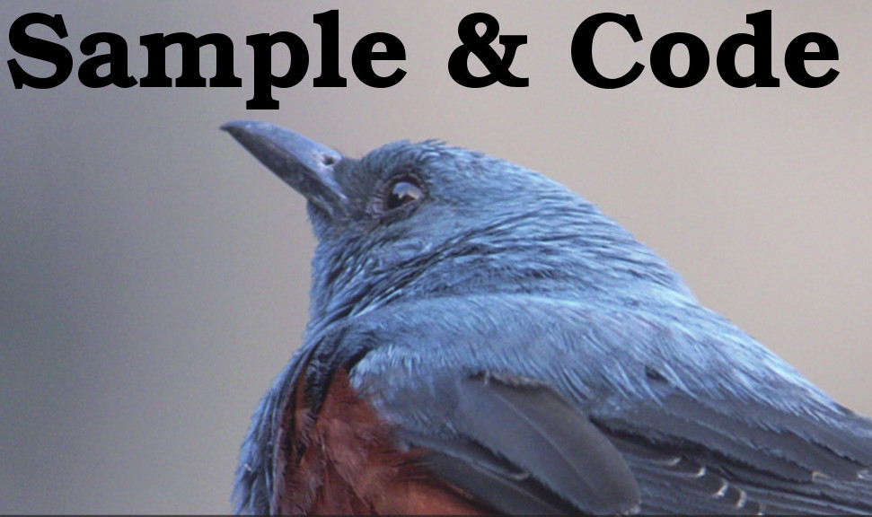 Sample and Code
