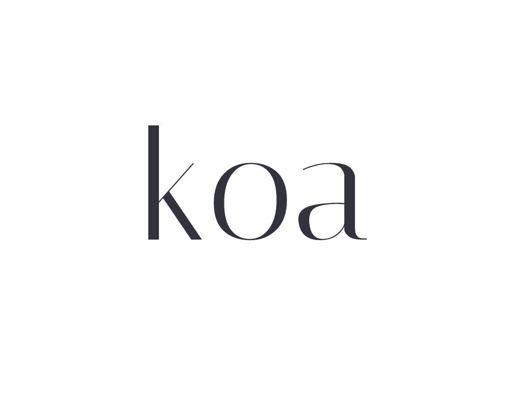 Koa中文教程