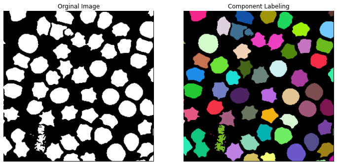 https://github.com/kornia/data/raw/main/cells_segmented.png