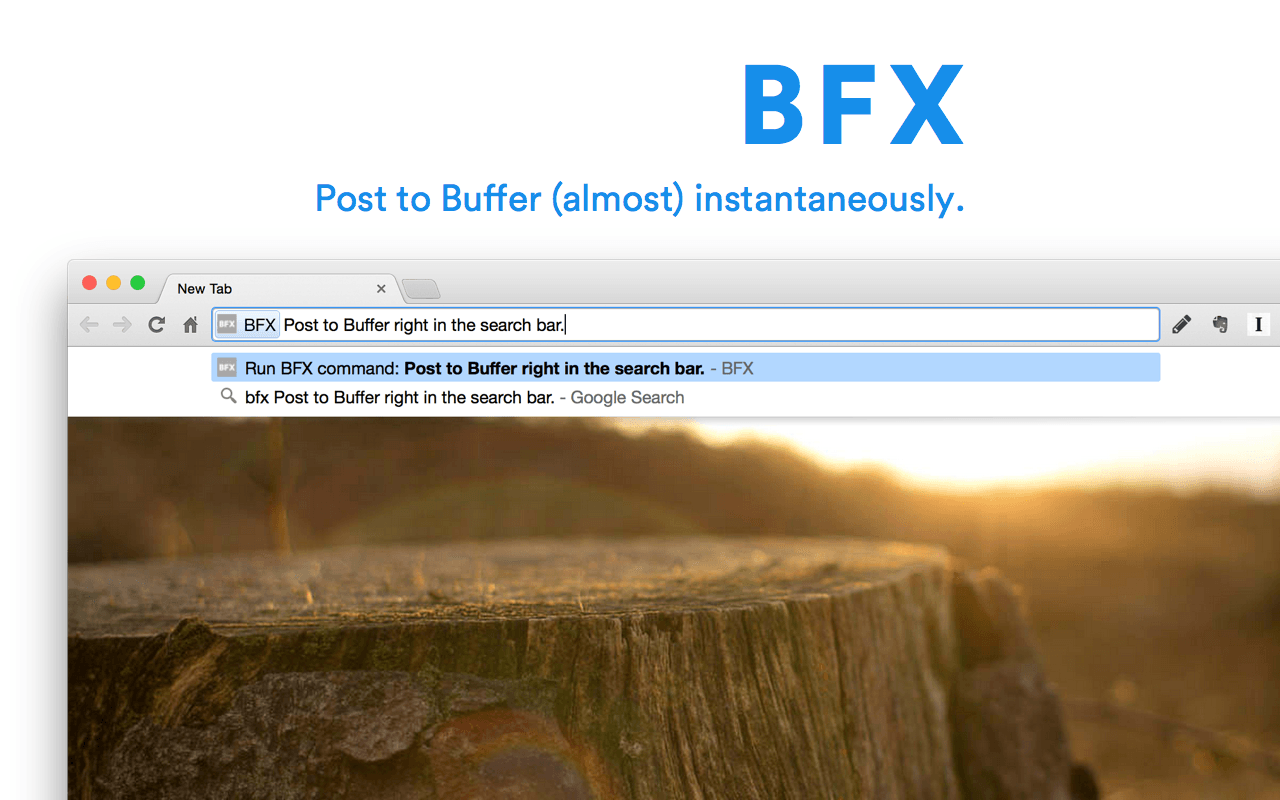 Screenshot of BFX