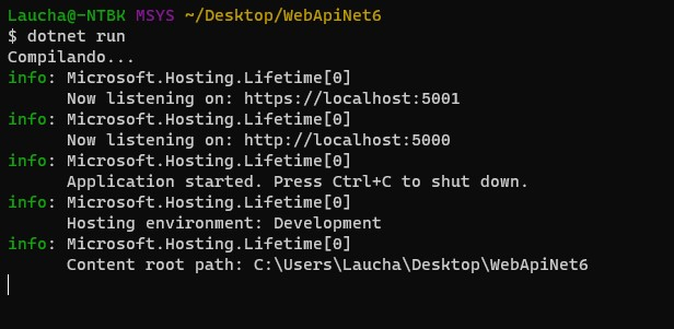Ejecutando el comando dotnet run para levantar por primera vez el proyecto