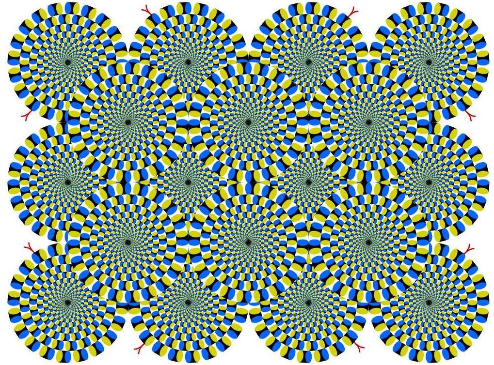 Figure 7: Les serpents qui tournoient Cette illusion crée par le professeur Akiyoshi Kitaoka induit des hallucinations de mouvements dans une image qui n'en contient pas.