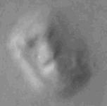 Figure 5: Vingt ans plus tard, une nouvelle sonde peut prendre un nouveau cliché de cette même surface de Mars. À basse résolution, on distingue toujours un visage… (source NASA/Wikipedia)