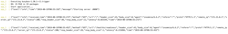 Logs in app init