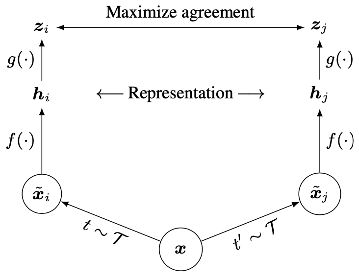 Network Architecture image from the paper