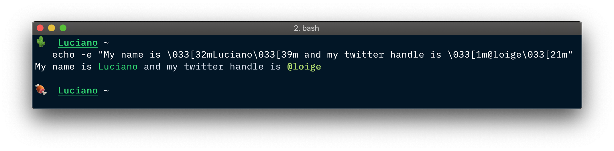 Formatted text in a Bash terminal