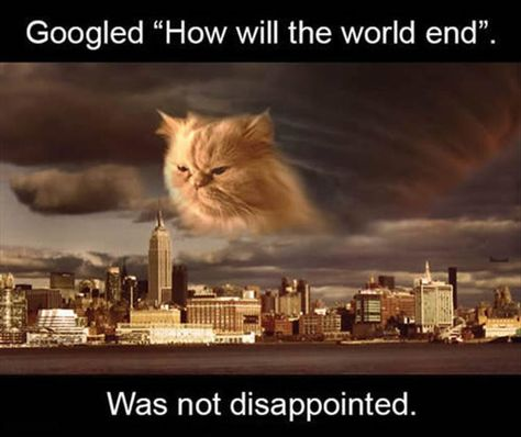 googled the end of the world was not disappointed. giant cat in the sky