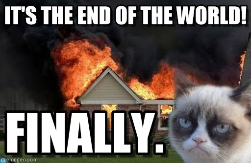 Grumpy the Cat in front of a burning house