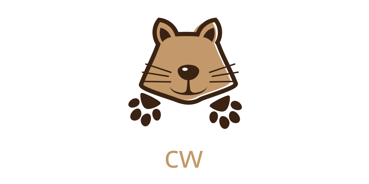 cw - the best way to tail AWS CloudWatch Logs