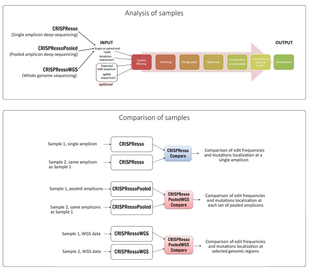 https://github.com/lucapinello/CRISPResso/blob/master/CRISPResso_pipeline.png?raw=true