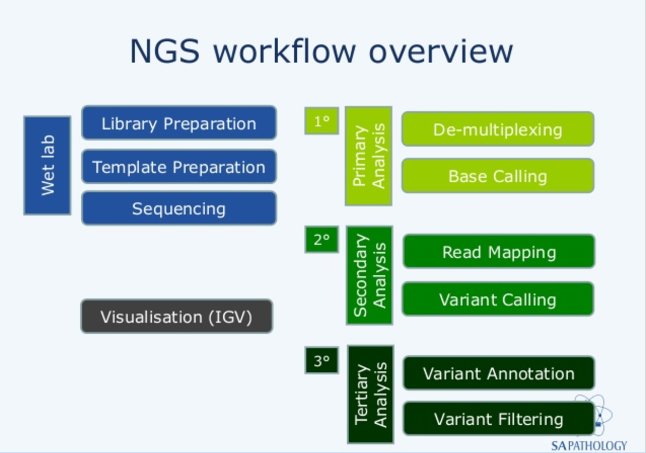 Next Generation Sequence Diagram