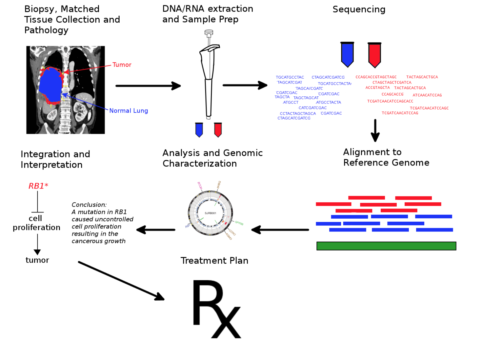 Cancer Sequencing Diagram