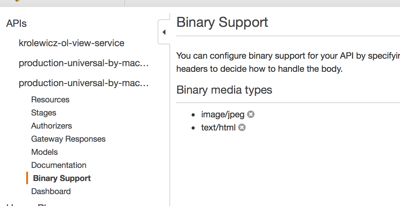 AWS API gateway binary support