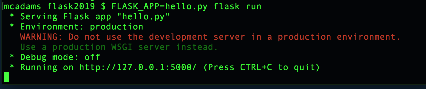 Results of FLASK_APP=hello.py flask run