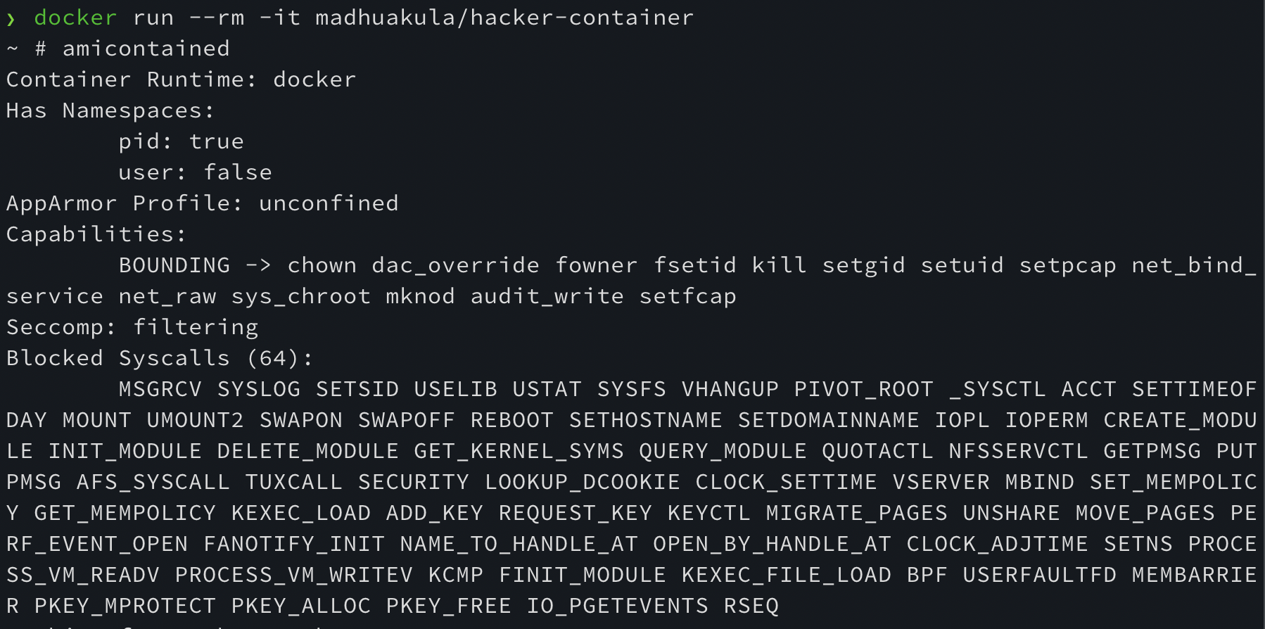 Hacker Container in Action