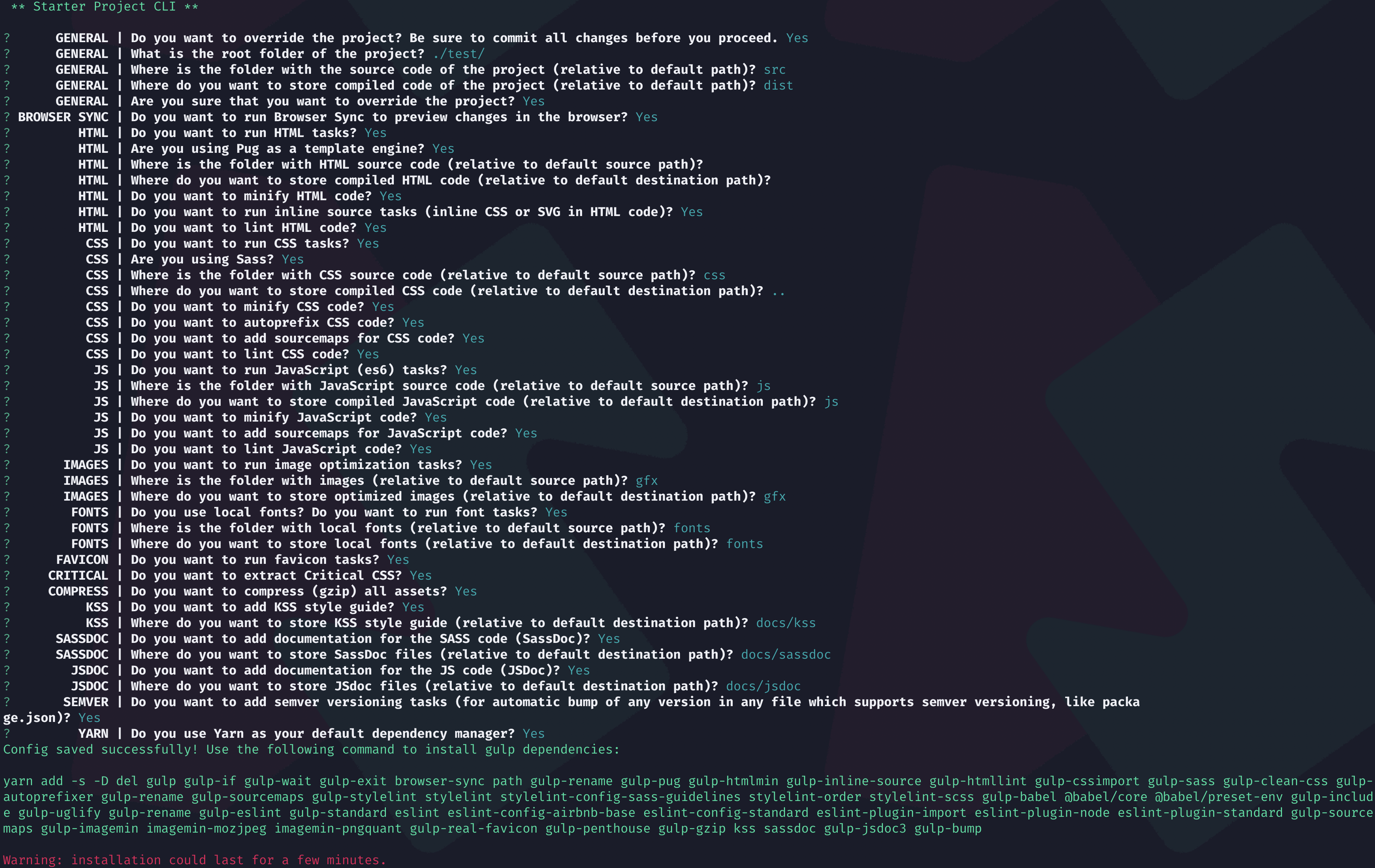Starter Project CLI in action