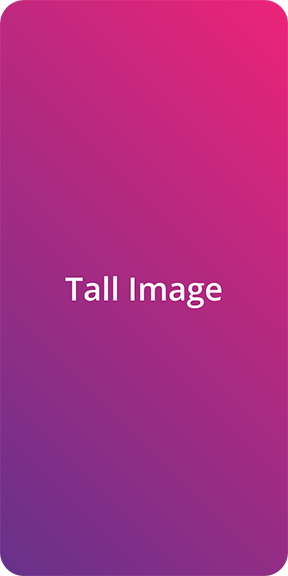 Figure 3: A tall image with a specified height. Loaded from a specific (hashed) version of the image on GitHub.