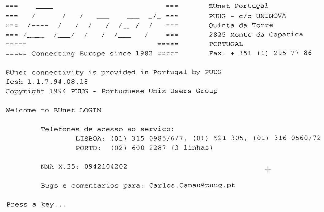 ligar à Internet em Portugal, em 1994