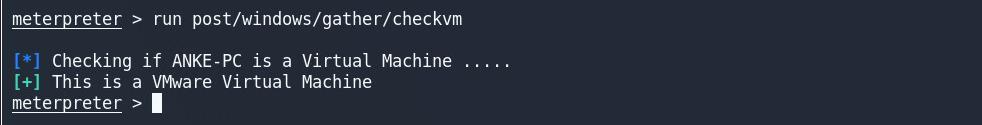 checkvm