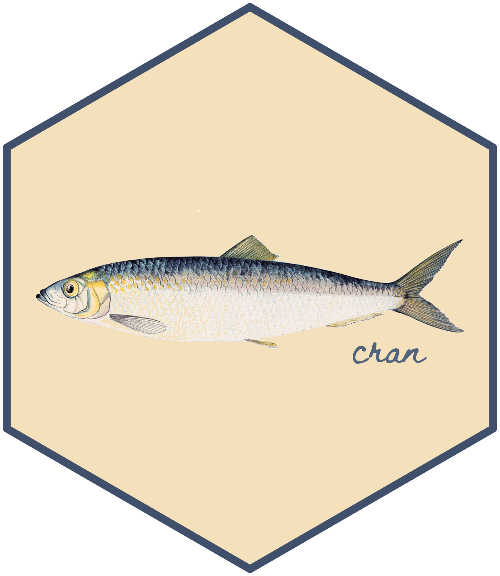 Hex sticker design with a picture of a herring and the word 'cran'.