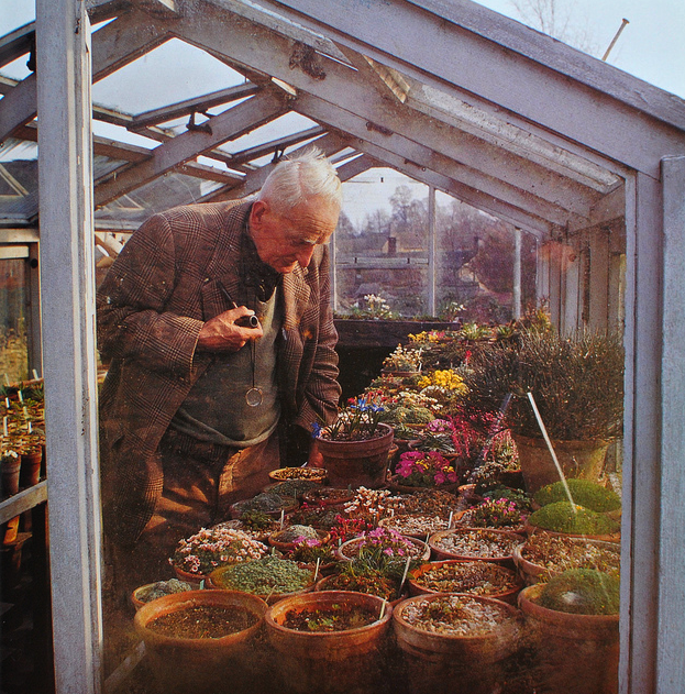 J. R. R. Tolkien in a greenhouse