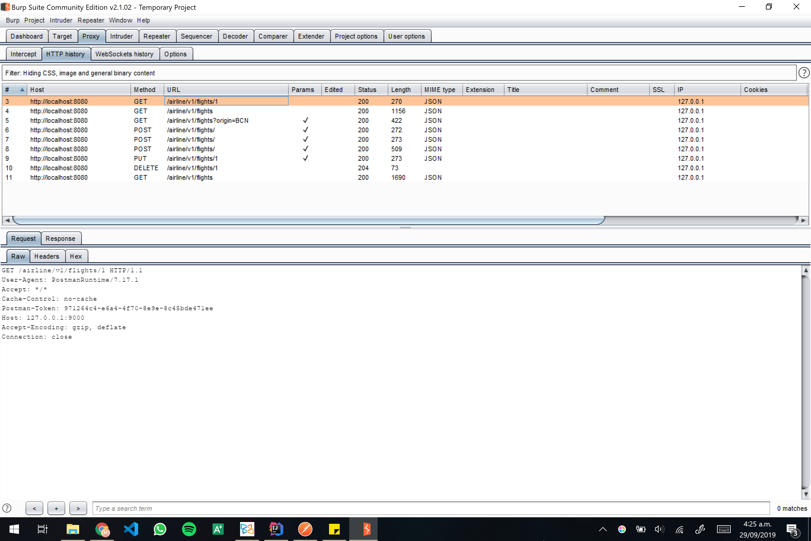 Burp screenshot 05