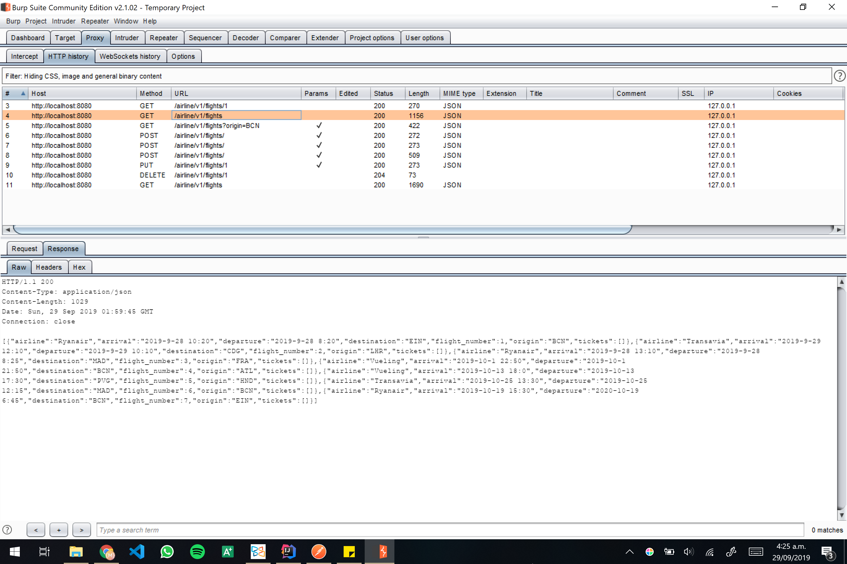 Burp screenshot 08