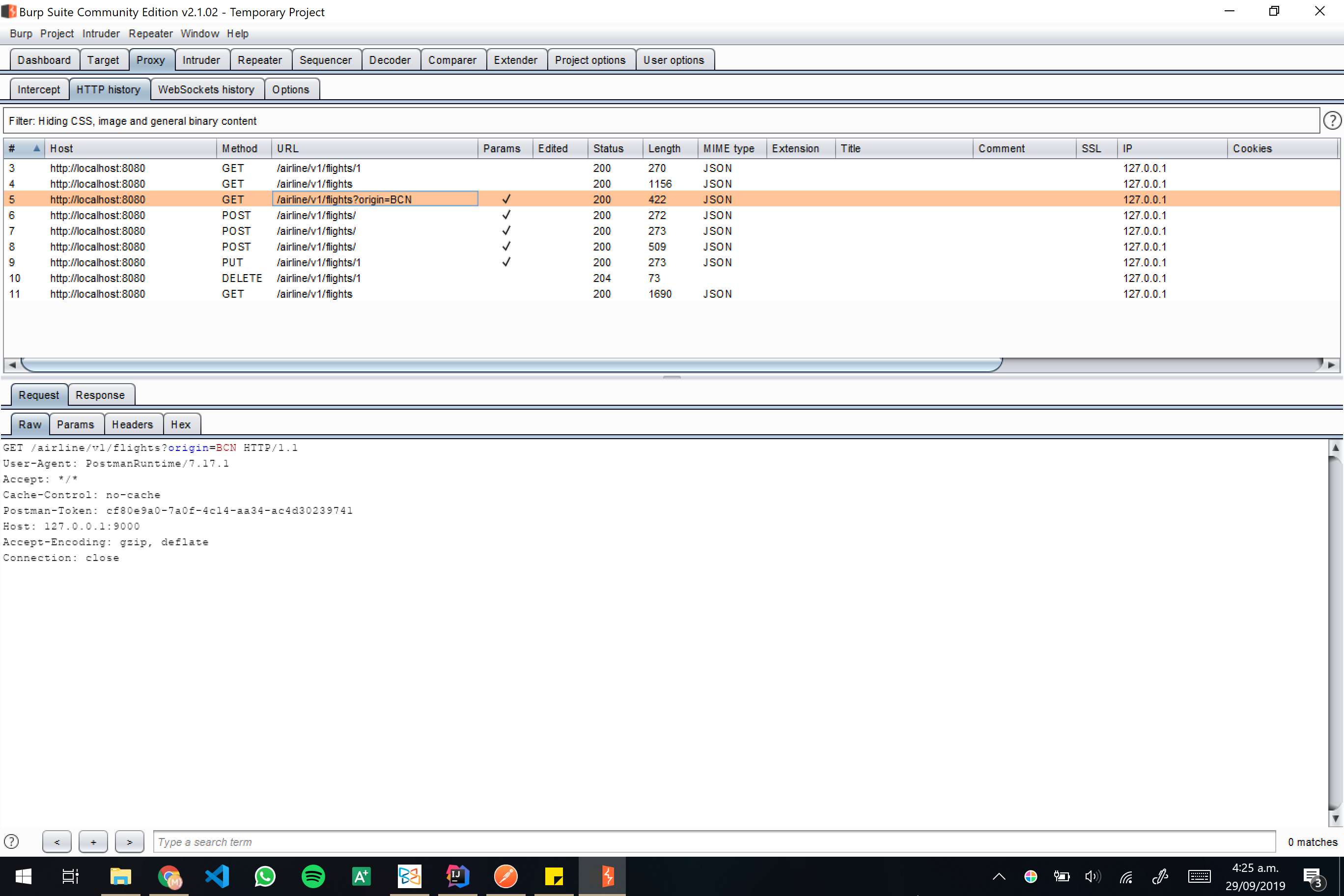 Burp screenshot 09