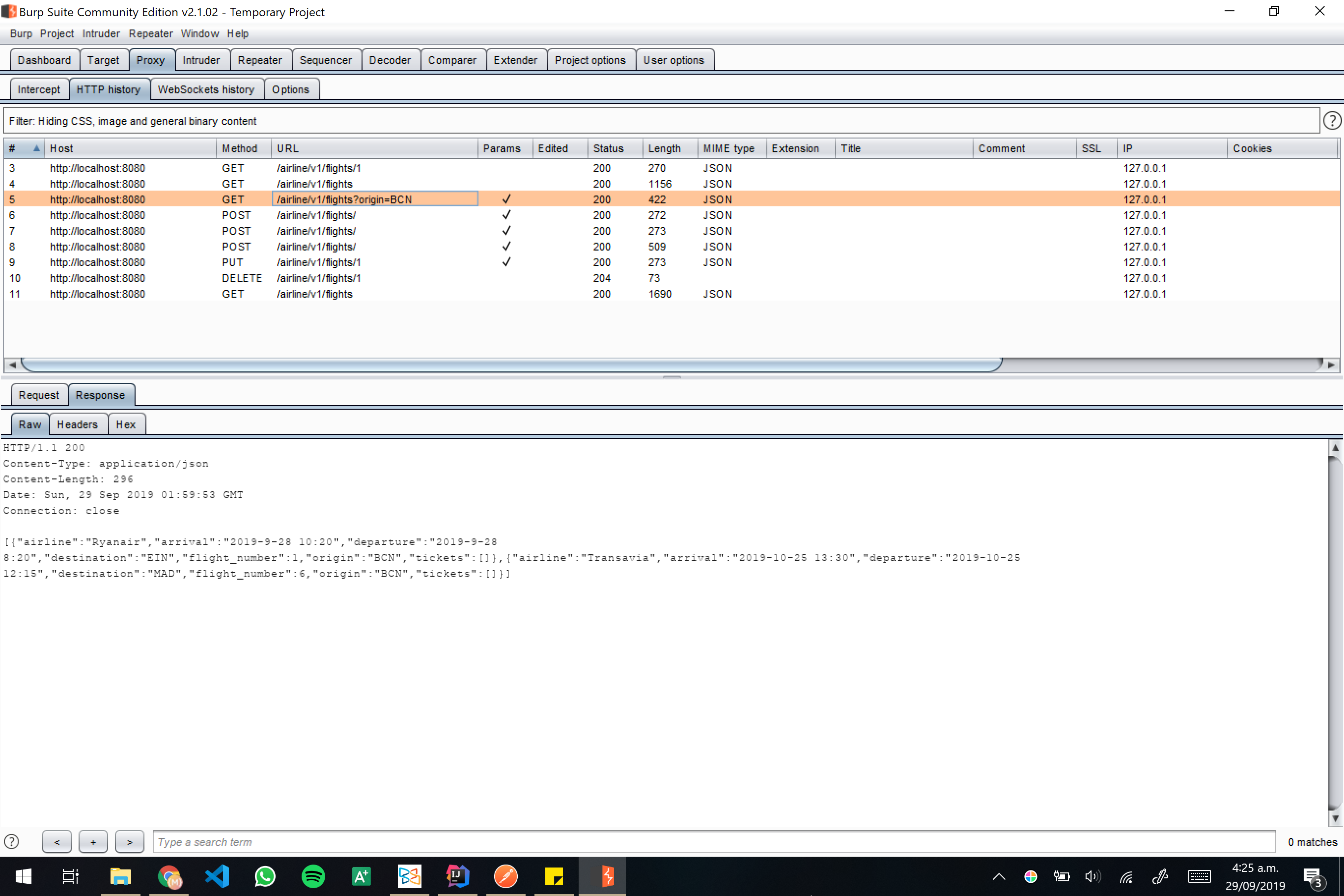 Burp screenshot 10