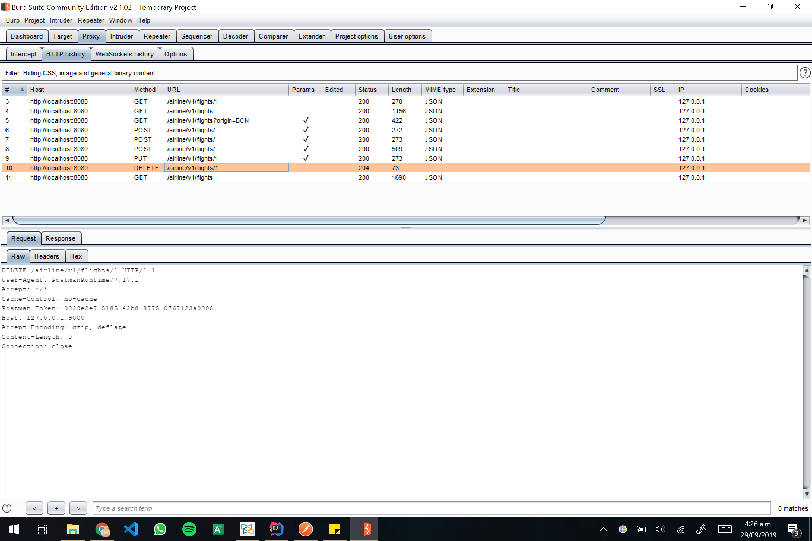 Burp screenshot 19