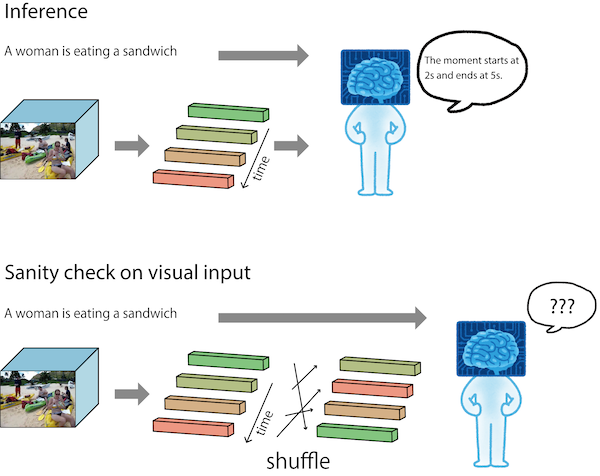 Checks on Visual Input