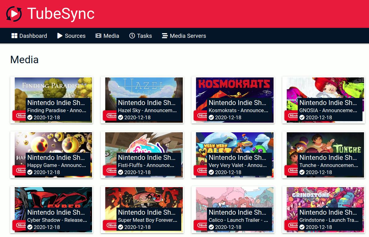 TubeSync media overview
