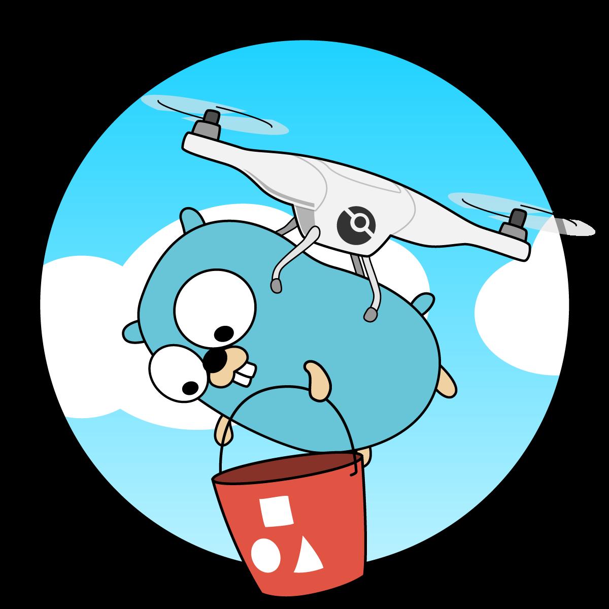 Drone Cache Logo