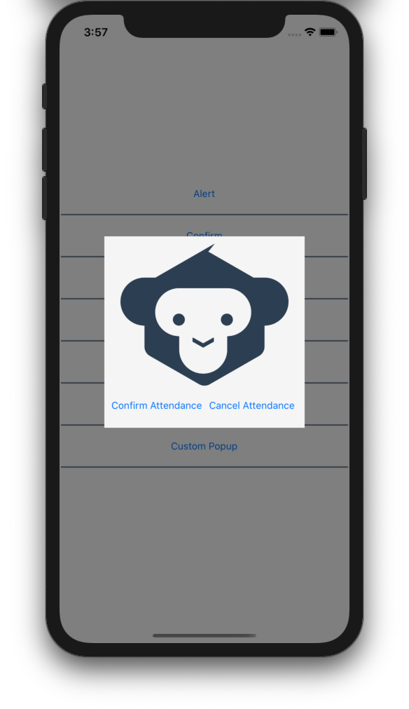 Using a custom popup in Xamarin.Forms