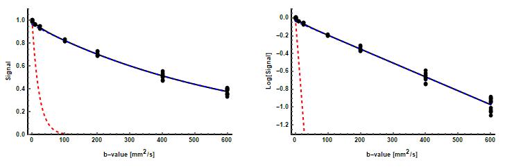 Visualization of IVIM fitting.