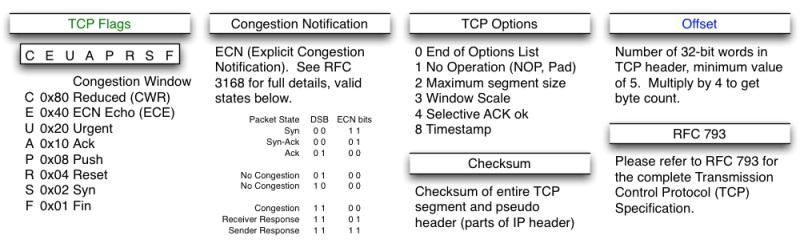 TCP头格式-02