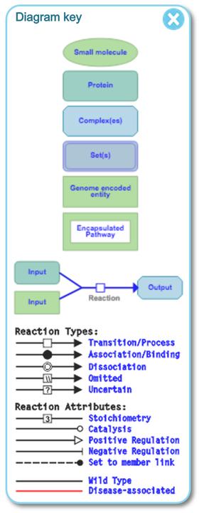 reactome5