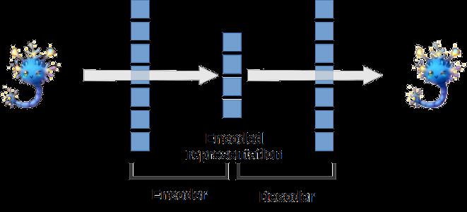 Single hidden layer ANN autoencoder