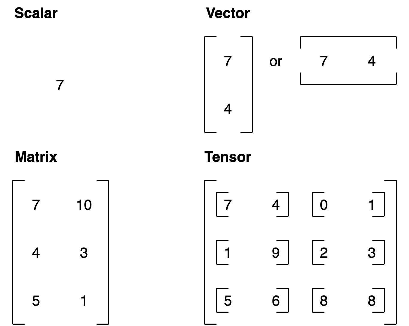 difference between scalar, vector, matrix, tensor