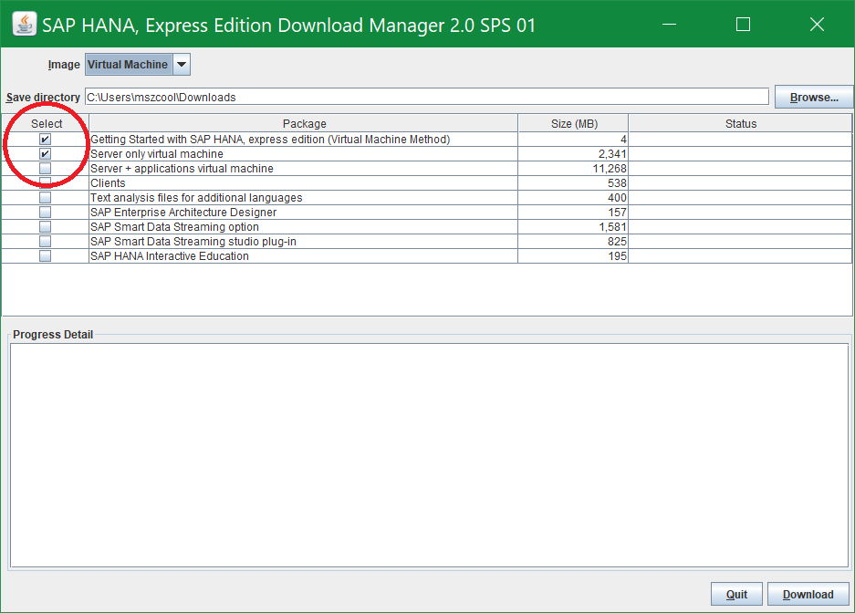 HANA Express Server Only Download Option