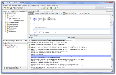 JavaNewService - NetBeans IDE 6.5