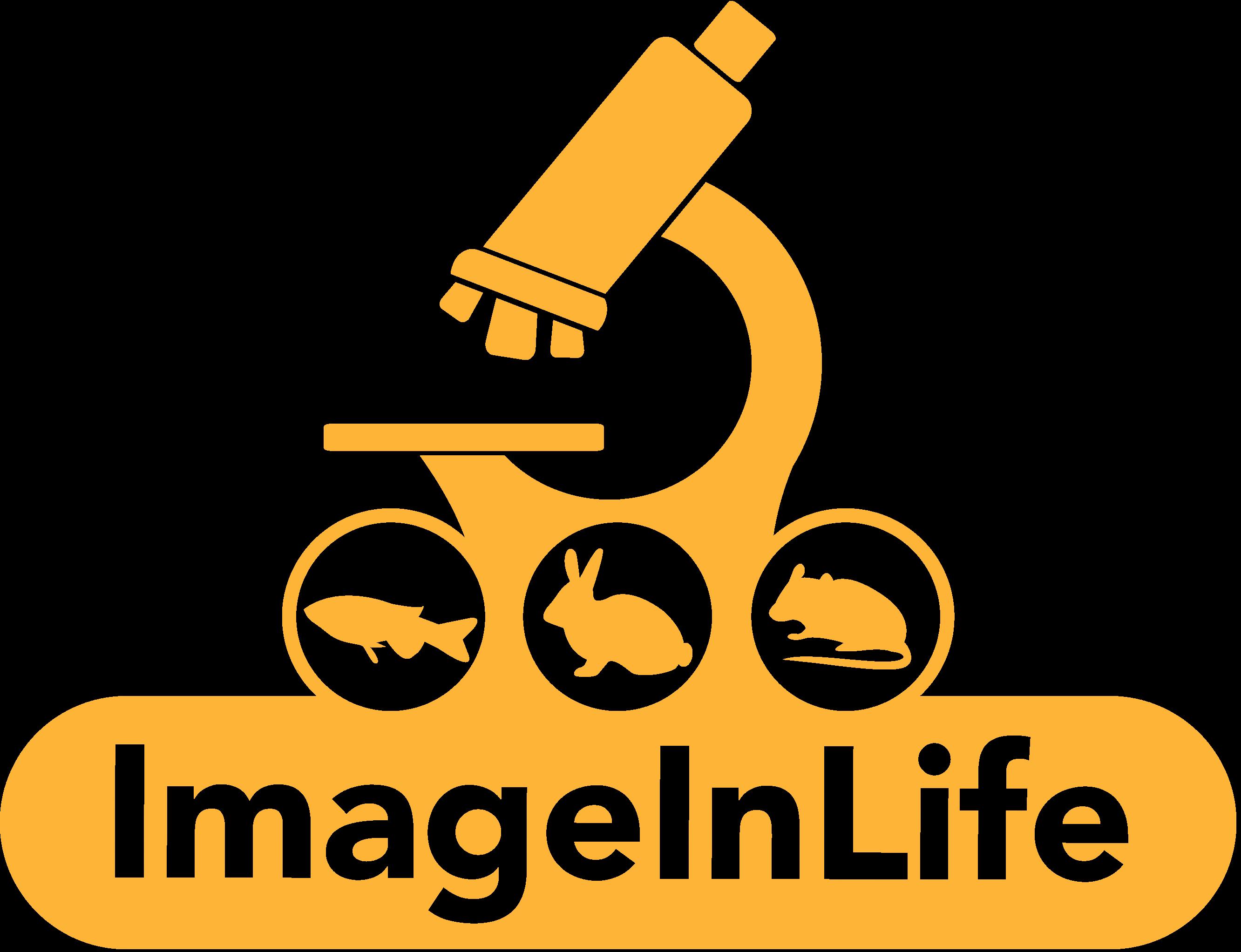 ImageInLife