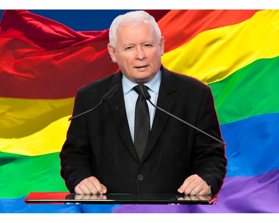 cej repo je strefa wolna wid Kaczyńskiego