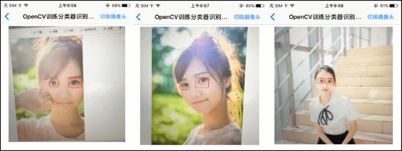 分类器识别图像效果图