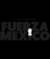 fuerza-mexico
