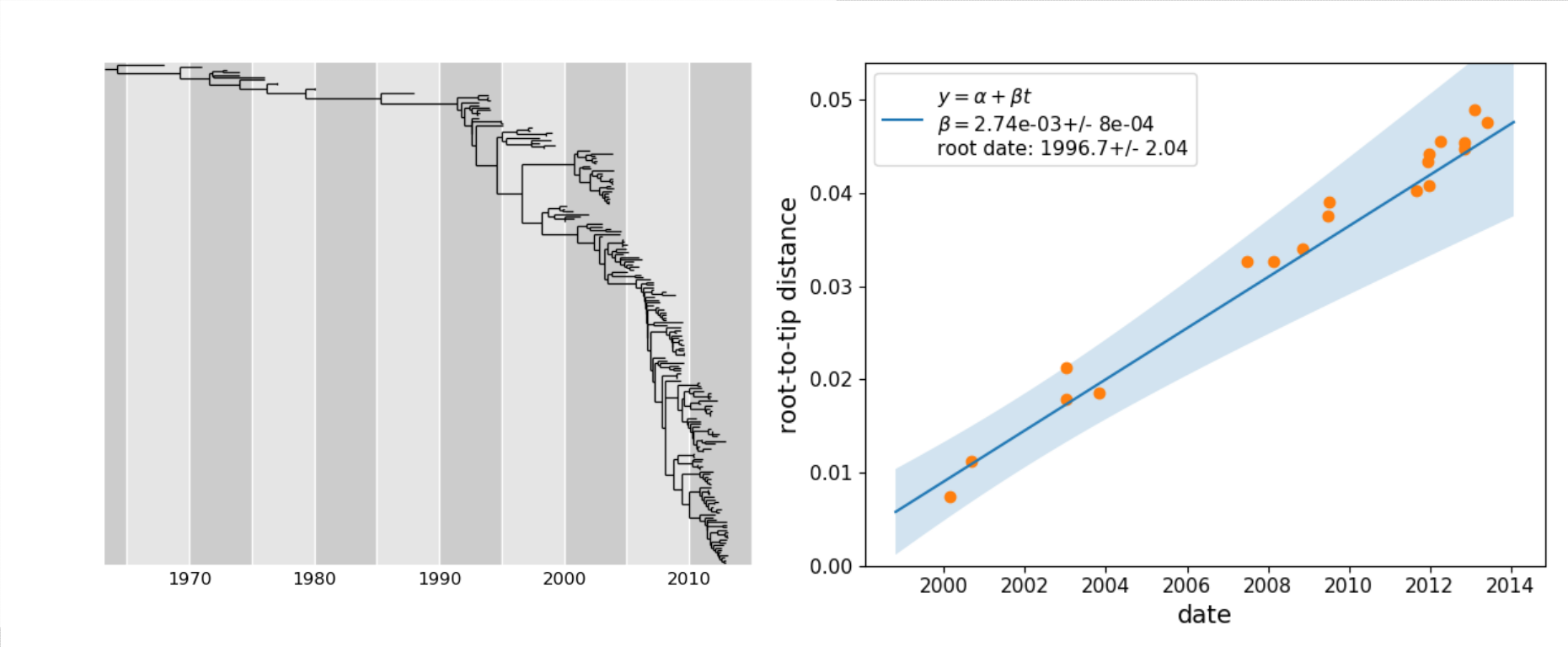 Molecular clock phylogeny of 200 NA sequences of influenza A H3N2