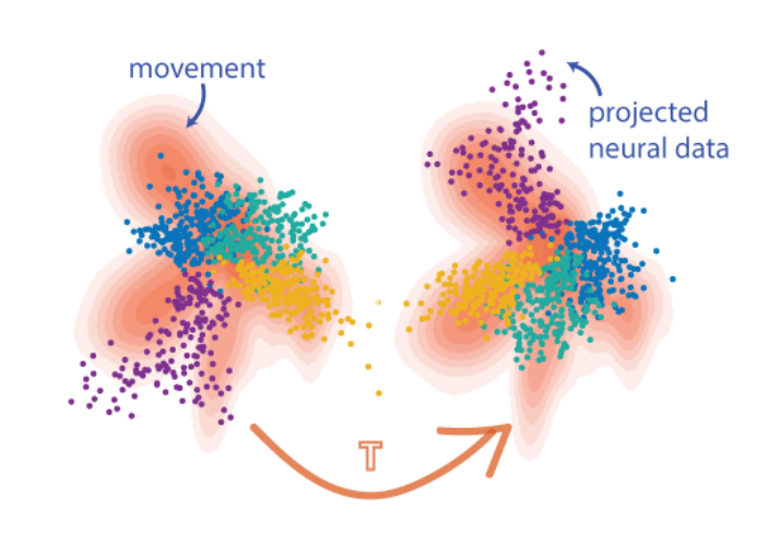 Aligning latent neural activity to a movement pattern