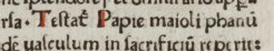 The word Papie in the oration by Nicholas of Modruš