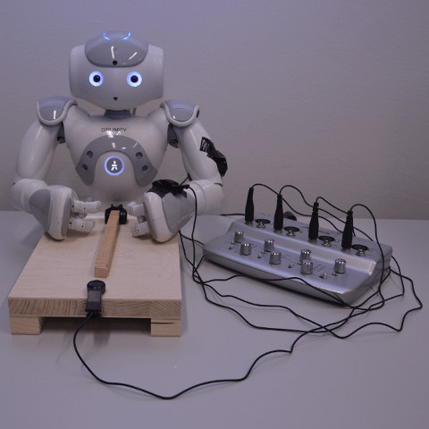Caption: Visuo-Haptic Object Recognition systems. Copyright Sibel Toprak