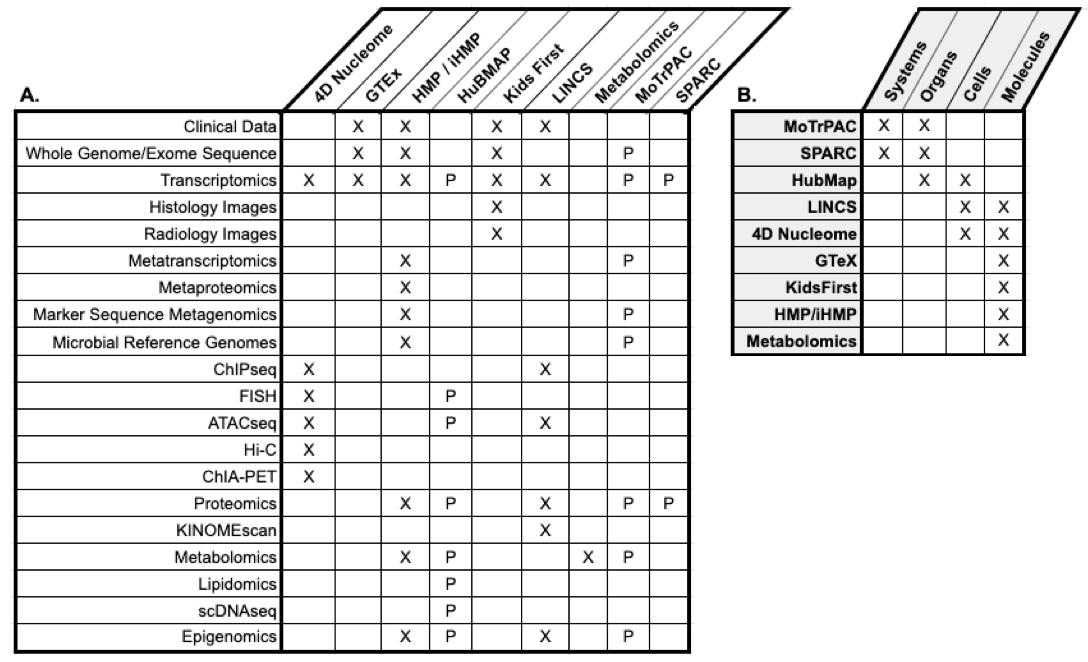 dcc data types